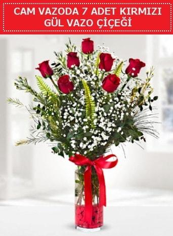 Cam vazoda 7 adet kırmızı gül çiçeği  Yozgat çiçek gönderme sitemiz güvenlidir