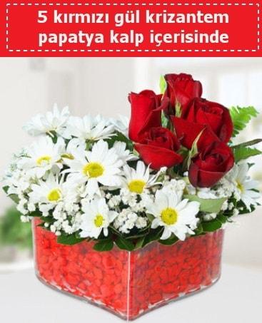 mika kalp içerisinde 5 kırmızı gül papatya  Yozgat çiçek gönderme