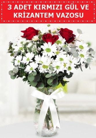 3 kırmızı gül ve camda krizantem çiçekleri  Yozgat çiçek gönderme