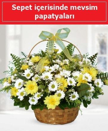 Sepet içerisinde mevsim papatyaları  Yozgat ucuz çiçek gönder