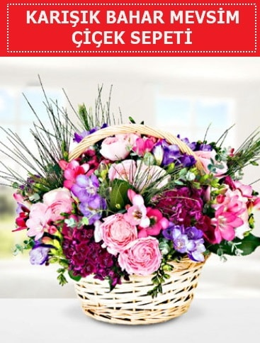 Karışık mevsim bahar çiçekleri  Yozgat ucuz çiçek gönder