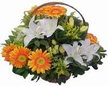 Yozgat online çiçekçi , çiçek siparişi  sepet modeli Gerbera kazablanka sepet