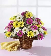 Yozgat çiçekçiler  Mevsim çiçekleri sepeti